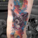 miss nico allstyletattooberlin tattoo inked chiuaua realistic portrait dogportrait