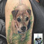 miss Nico All Style Tattoo Berlin allstyletattoo dogportrait realistictattoo portrait dogtattoo colortattoo armtattoo tätowierung hund hundetattoo