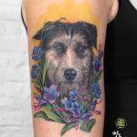 miss Nico All Style Tattoo Berlin allstyletattoo dogportrait portrait dogtattoo colortattoo armtattoo tätowierung hund hundetattoo realistictattoo